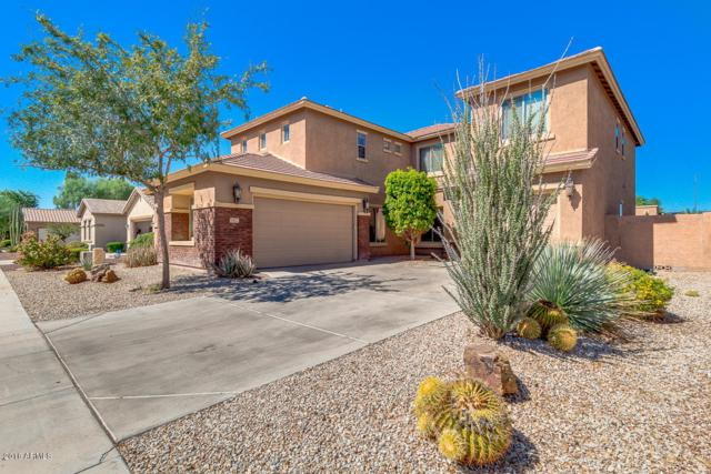 3922 E Virgo Place, Chandler, AZ 85249 (MLS #5827675) :: The Kenny Klaus Team