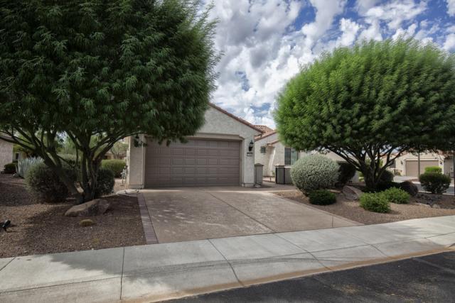 27047 W Runion Drive, Buckeye, AZ 85396 (MLS #5827745) :: Desert Home Premier