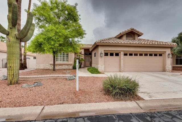 24813 S Rosewood Drive, Sun Lakes, AZ 85248 (MLS #5827795) :: Occasio Realty