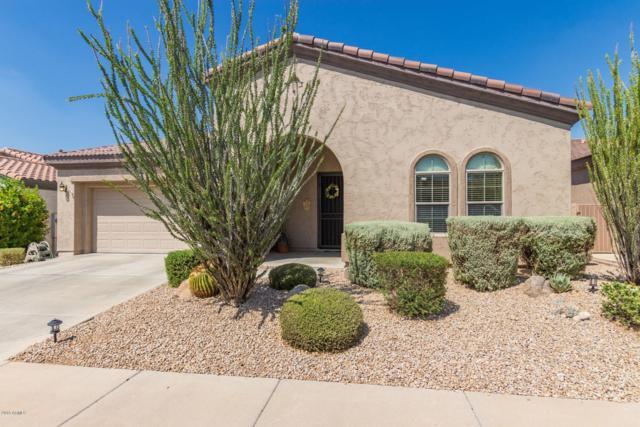 4218 E Sourwood Drive, Gilbert, AZ 85298 (MLS #5827804) :: Revelation Real Estate