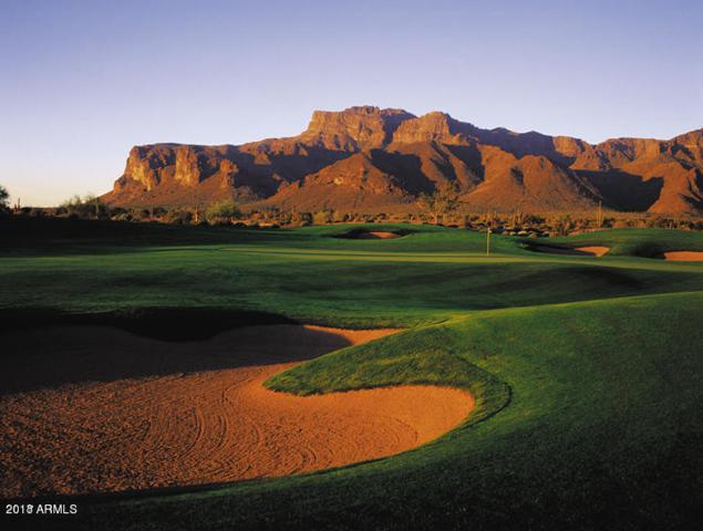 8725 E Quartz Mountain Drive, Gold Canyon, AZ 85118 (MLS #5827877) :: The Jesse Herfel Real Estate Group