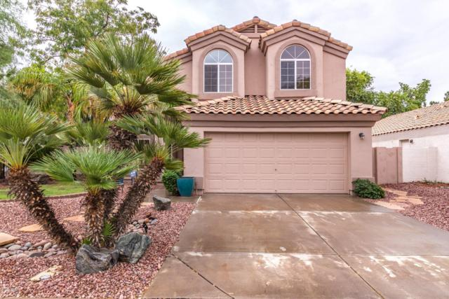 1769 E Boston Circle, Chandler, AZ 85225 (MLS #5827884) :: The Garcia Group