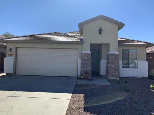 357 W Dexter Way, San Tan Valley, AZ 85143 (MLS #5828052) :: Yost Realty Group at RE/MAX Casa Grande