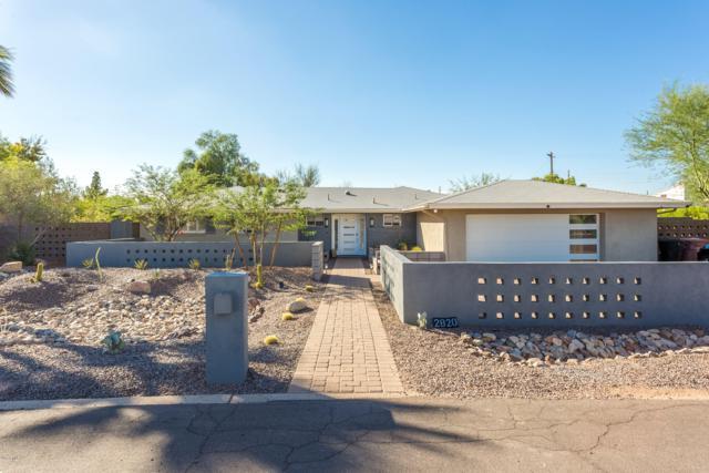 2820 N 56TH Place, Scottsdale, AZ 85257 (MLS #5828165) :: Team Wilson Real Estate