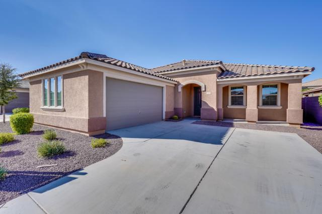 15862 W Desert Hills Drive, Surprise, AZ 85379 (MLS #5828238) :: The W Group