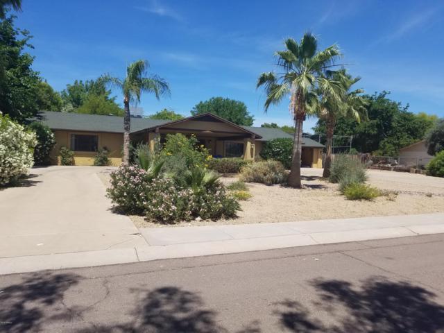 5234 E Cactus Road, Scottsdale, AZ 85254 (MLS #5828366) :: My Home Group