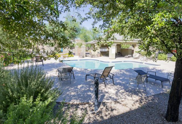 16825 N 14TH Street #67, Phoenix, AZ 85022 (MLS #5828369) :: The Jesse Herfel Real Estate Group