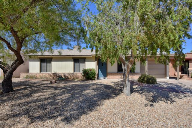 3732 E Greenway Lane, Phoenix, AZ 85032 (MLS #5828437) :: The Garcia Group