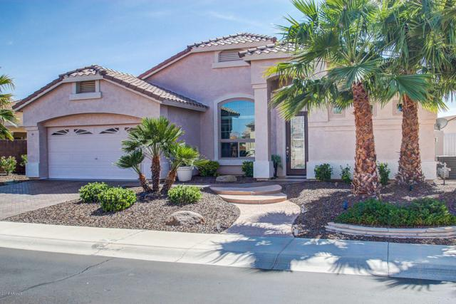 18221 W Continental Parkway, Surprise, AZ 85374 (MLS #5828586) :: The Laughton Team