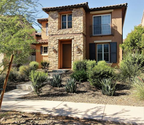 28951 N 124TH Avenue, Peoria, AZ 85383 (MLS #5828729) :: The Results Group