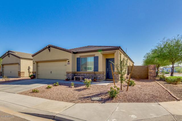 4117 S 81ST Glen, Phoenix, AZ 85043 (MLS #5828906) :: The Jesse Herfel Real Estate Group