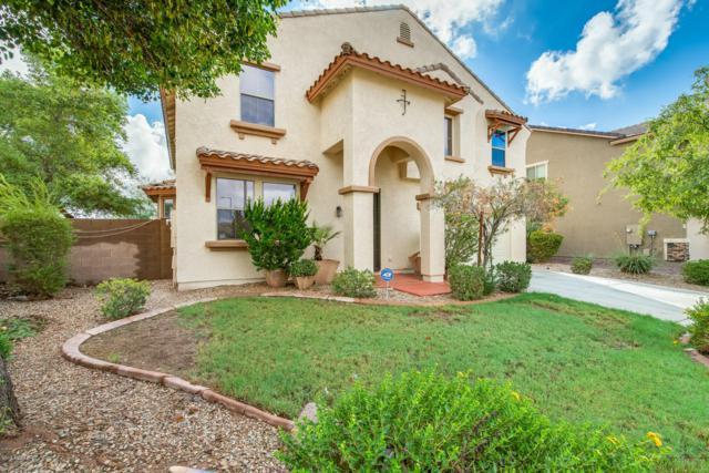 12125 N 157TH Avenue, Surprise, AZ 85379 (MLS #5828987) :: Keller Williams Realty Phoenix