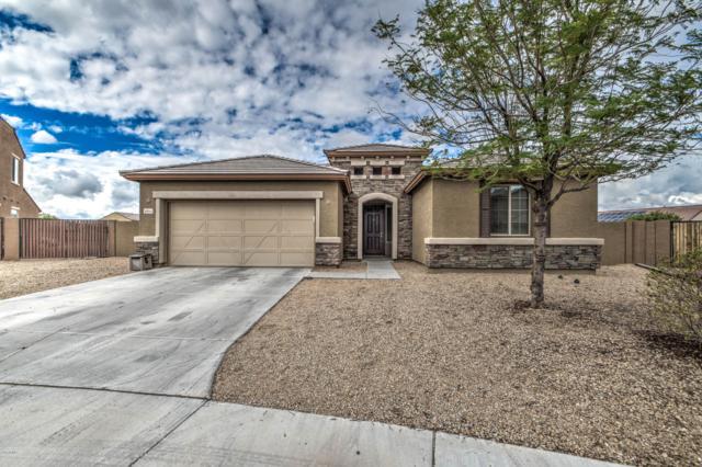 16045 W Desert Flower Drive, Goodyear, AZ 85395 (MLS #5829221) :: CC & Co. Real Estate Team