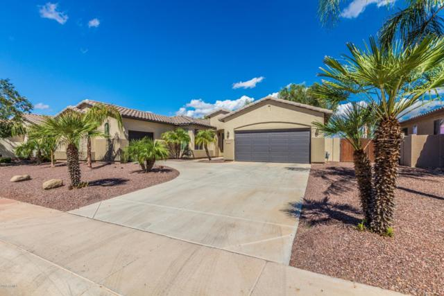 3370 E Horseshoe Drive, Chandler, AZ 85249 (MLS #5829302) :: Team Wilson Real Estate