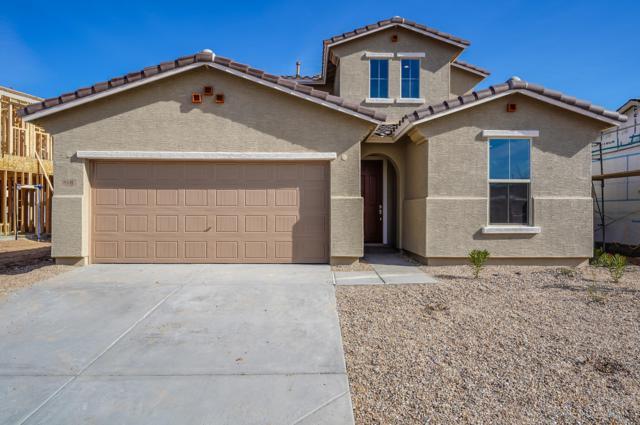 8531 S 40TH Glen, Laveen, AZ 85339 (MLS #5829588) :: Arizona 1 Real Estate Team