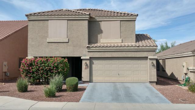 4548 N 109TH Lane, Phoenix, AZ 85037 (MLS #5829643) :: The Garcia Group