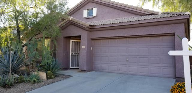 4159 E Hallihan Drive, Cave Creek, AZ 85331 (MLS #5829755) :: Lux Home Group at  Keller Williams Realty Phoenix
