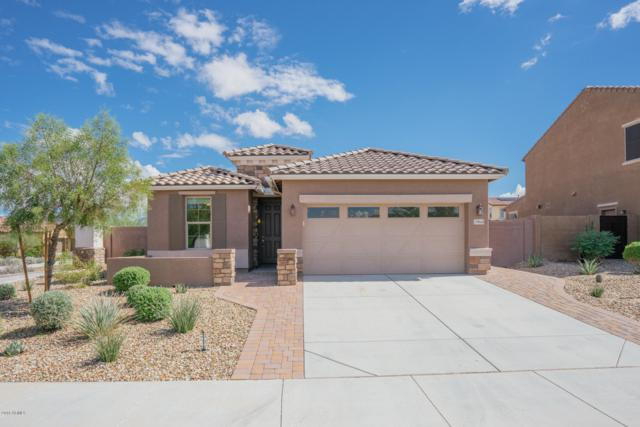 17845 W Desert Trumpet Road, Goodyear, AZ 85338 (MLS #5829874) :: Lux Home Group at  Keller Williams Realty Phoenix