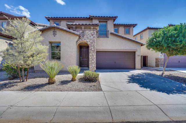 6453 S Goldfinch Drive, Gilbert, AZ 85298 (MLS #5829880) :: The Kenny Klaus Team