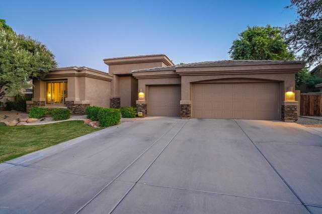 1105 W Musket Way, Chandler, AZ 85286 (MLS #5829935) :: The W Group