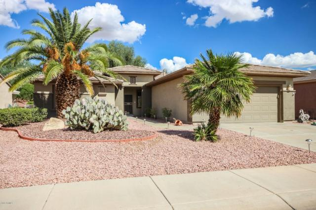 15136 W Cactus Ridge Way, Surprise, AZ 85374 (MLS #5830009) :: Yost Realty Group at RE/MAX Casa Grande