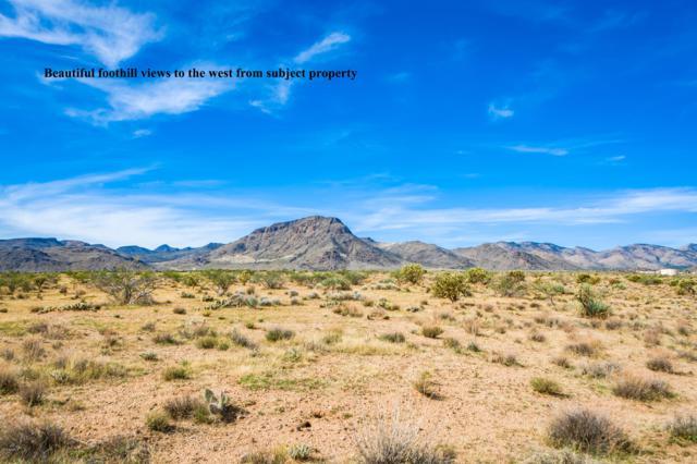 280 ACRES Grace Neal (Approx) Boulevard, Kingman, AZ 86401 (MLS #5830063) :: Brett Tanner Home Selling Team