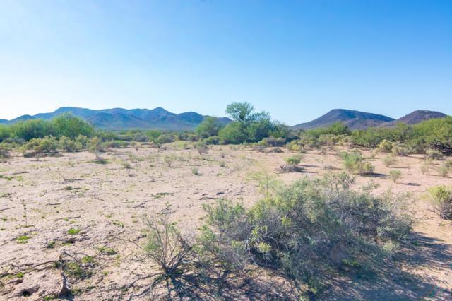 13XX S 397TH (APPROX) Avenue, Tonopah, AZ 85354 (MLS #5830200) :: Riddle Realty Group - Keller Williams Arizona Realty