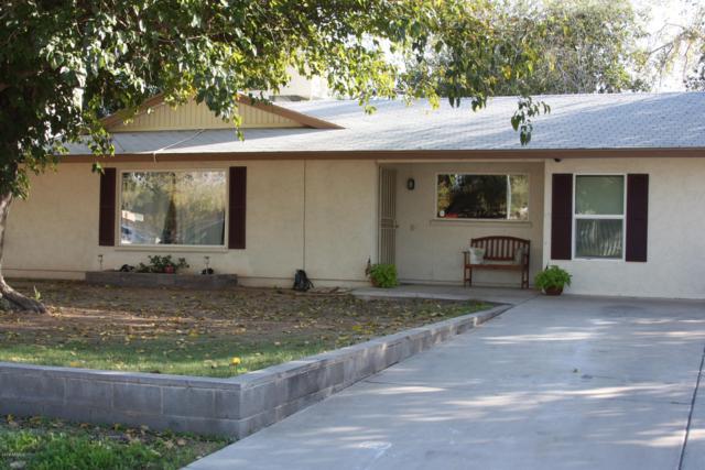 5335 W Tierra Buena Lane, Glendale, AZ 85306 (MLS #5830304) :: The W Group