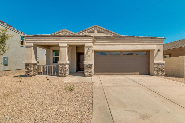 41894 W Manderas Lane, Maricopa, AZ 85138 (MLS #5830629) :: Kepple Real Estate Group