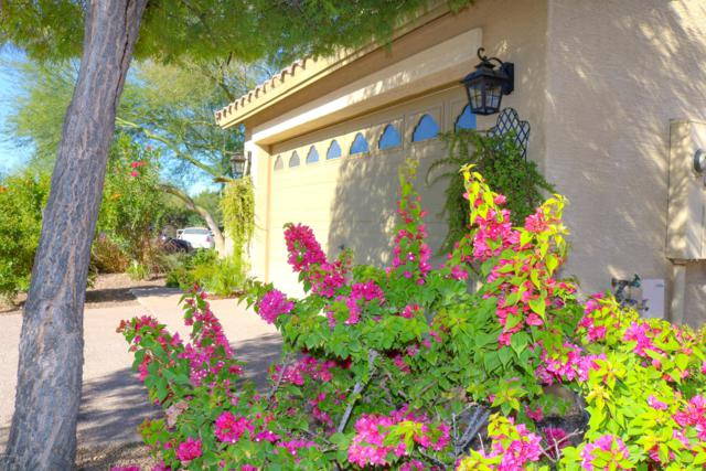 7128 W Williams Street, Phoenix, AZ 85043 (MLS #5831172) :: Lifestyle Partners Team