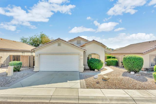 2219 E Mariposa Grande Street, Phoenix, AZ 85024 (MLS #5831303) :: The Jesse Herfel Real Estate Group