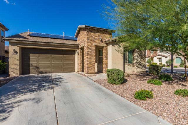3960 E Ficus Way, Gilbert, AZ 85298 (MLS #5831372) :: Lux Home Group at  Keller Williams Realty Phoenix
