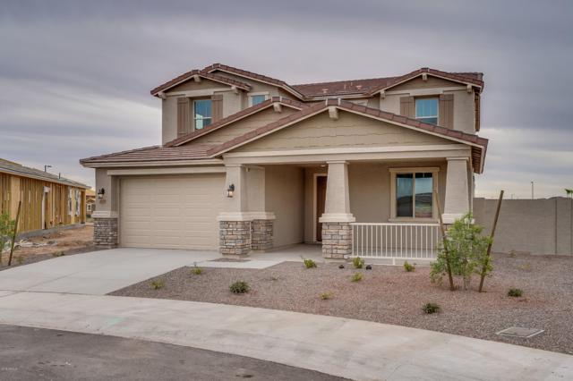 18097 W Candelaria Drive, Surprise, AZ 85387 (MLS #5831381) :: Kepple Real Estate Group