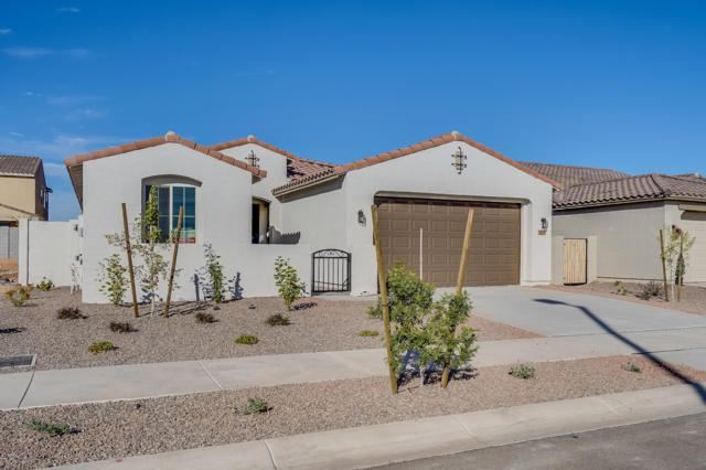 18164 W Carlota Lane, Surprise, AZ 85387 (MLS #5831430) :: Kepple Real Estate Group