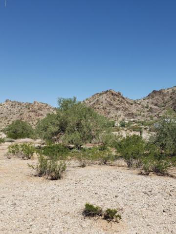 54144 W Terra Drive, Maricopa, AZ 85139 (MLS #5831483) :: Yost Realty Group at RE/MAX Casa Grande