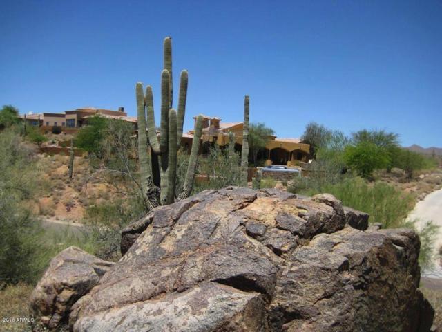 16245 E Powderhorn Drive, Fountain Hills, AZ 85268 (MLS #5831616) :: The W Group