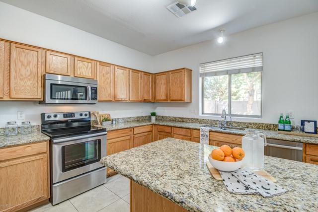 1629 S Starling Drive, Gilbert, AZ 85295 (MLS #5831766) :: The Garcia Group