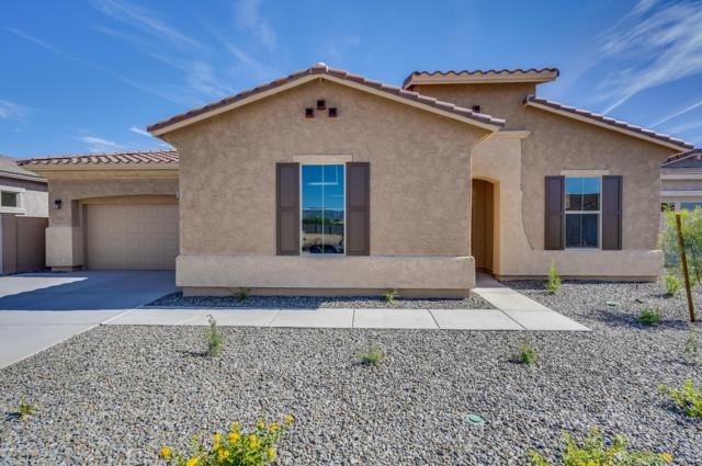 5025 N 190TH Drive, Litchfield Park, AZ 85340 (MLS #5831778) :: The Results Group