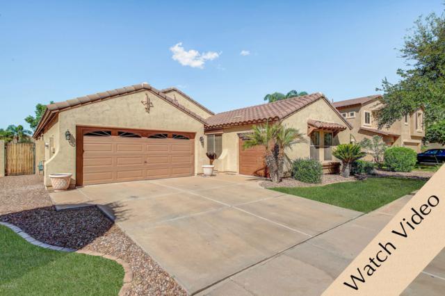 4590 E Ironhorse Road, Gilbert, AZ 85297 (MLS #5832052) :: The Garcia Group