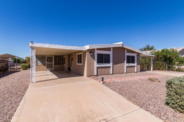 914 S 95TH Way, Mesa, AZ 85208 (MLS #5832069) :: The Bill and Cindy Flowers Team