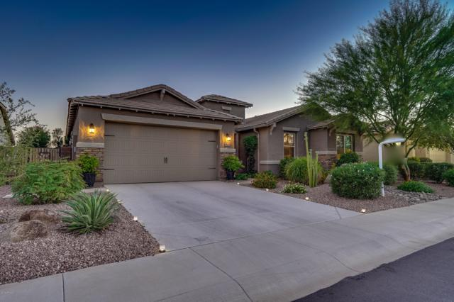 18467 W Tasha Drive, Surprise, AZ 85388 (MLS #5832196) :: The Garcia Group @ My Home Group