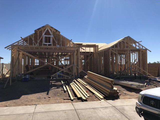 11441 E Seaver Avenue, Mesa, AZ 85212 (MLS #5832755) :: The Everest Team at My Home Group