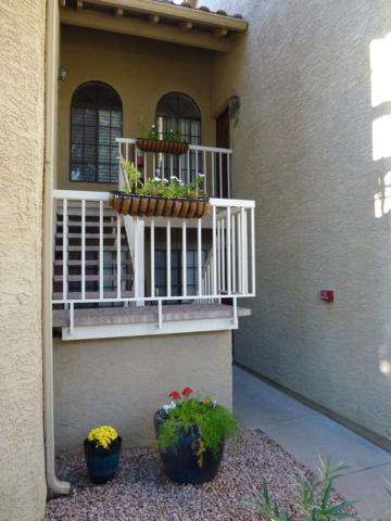 11011 N 92ND Street #2155, Scottsdale, AZ 85260 (MLS #5832859) :: Phoenix Property Group