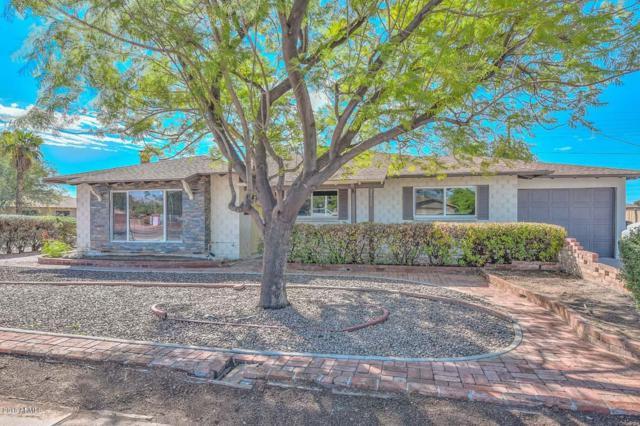 8531 E Chaparral Road, Scottsdale, AZ 85250 (MLS #5832981) :: HomeSmart