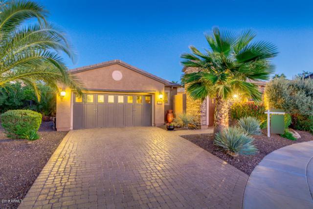 28349 N 128TH Drive, Peoria, AZ 85383 (MLS #5833135) :: Desert Home Premier