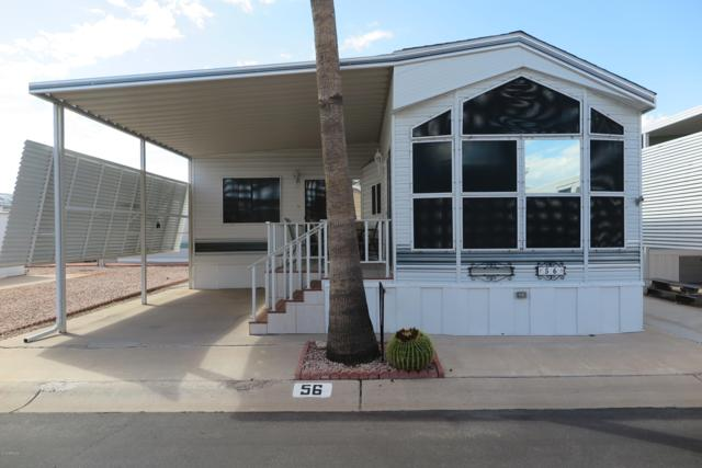 3710 S Goldfield Road, Apache Junction, AZ 85119 (MLS #5833701) :: Yost Realty Group at RE/MAX Casa Grande