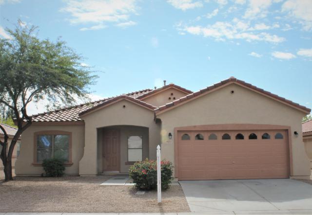 9031 E Plata Avenue, Mesa, AZ 85212 (MLS #5833872) :: Lux Home Group at  Keller Williams Realty Phoenix