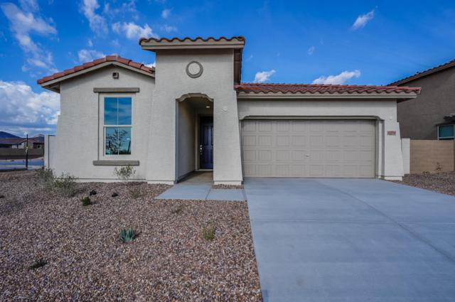 11554 W Lone Tree Trail, Peoria, AZ 85383 (MLS #5834229) :: The Results Group