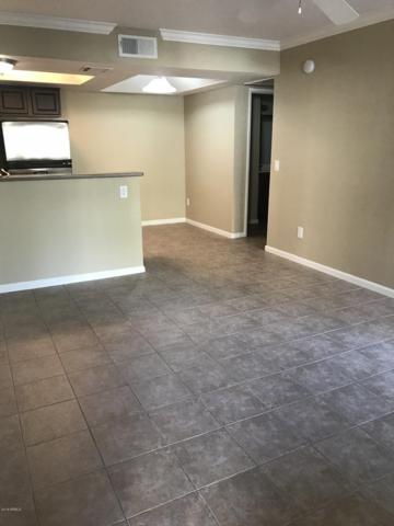 1720 E Thunderbird Road #1015, Phoenix, AZ 85022 (MLS #5834409) :: The Wehner Group