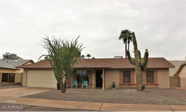 4648 E Cheyenne Drive, Phoenix, AZ 85044 (MLS #5834470) :: Kepple Real Estate Group